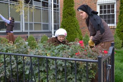 Fall_Gardening2014